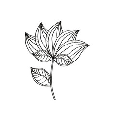 lotus flower decoration sketch vector image vector image