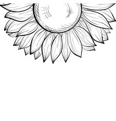 Black and white background with a floral border vector
