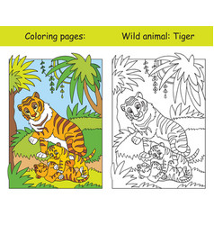 coloring and color tiger vector image