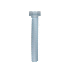 hex bolt isolated on white background vector image