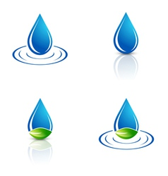 Water Drop and Green Leaf vector image