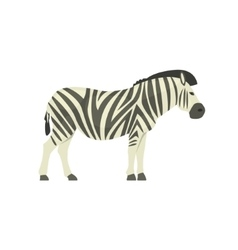 Zebra Realistic Simplified Drawing vector image
