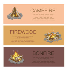 campfire firewood and bonfire colorful poster vector image
