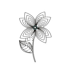 lily flower decoration sketch vector image
