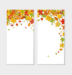 banner set with autumn falling leaf isolated on vector image