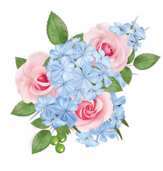 bouquet roses and phloxes vector image