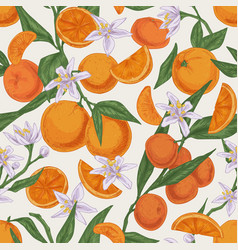Seamless realistic citrus pattern with whole vector