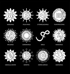 viruses types icon set in flat style vector image