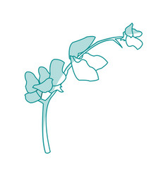 blue silhouette image flower exotic orchid branch vector image