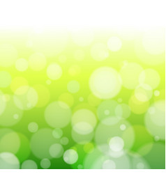 spring forest bokeh vector image vector image