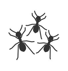 Ants glyph icon vector