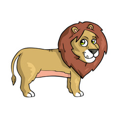 lion on white background cute cartoon animal vector image