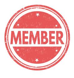 member grunge rubber stamp vector image