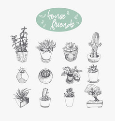 set of hand drawn plants in pots isolated on vector image