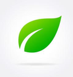 Single stylized lush green leaf vector