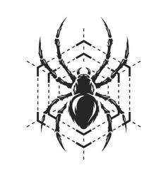 Spider and web monochrome symbol vector