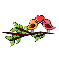 two cute birds with heart on leafy branch card for vector image