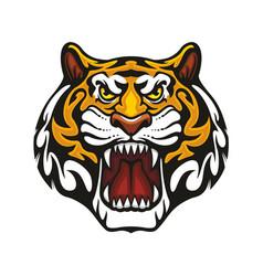 Tiger animal muzzle sport team mascot icon vector