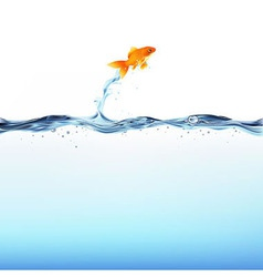 Goldfish And Water vector image