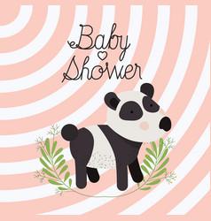 baby shower card with cute bear panda vector image