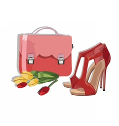 Beautiful Red shinning Shoes and bag Accessory vector