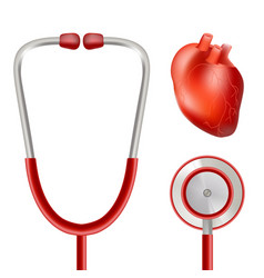 heart health and stethoscope isolated on a white vector image