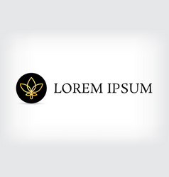 lotus golden line logo circle design template vector image