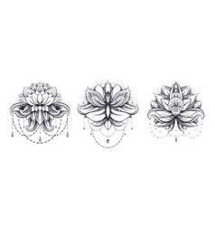 Ornamental Lotus set vector