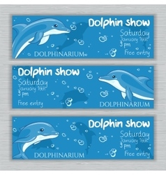 Set of printable dolphinarium banner with vector