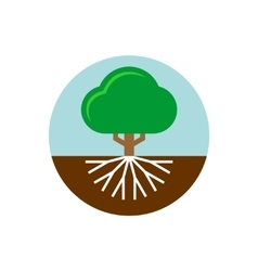 Tree with roots trunk and crown vector