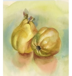 Watercolor ripe apples background vector image