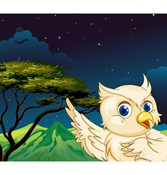 A big bird in the forest vector image vector image