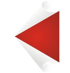 white center vector image