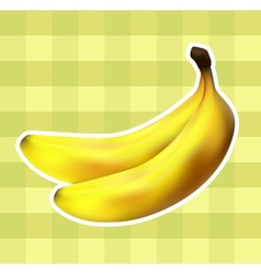 Plaid fabric with bananas vector image vector image