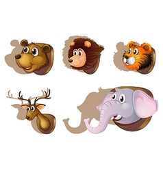Five stuffed heads of animals vector image vector image