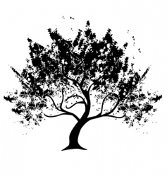 grunge tree vector image