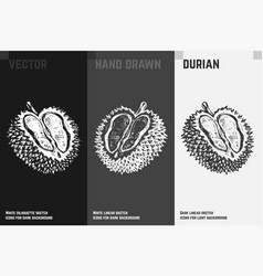 Hand drawn durian icons vector