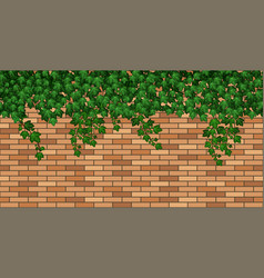 Ivy on brick wall green ivy leaves climbing on vector