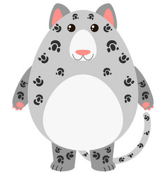 leopard with round body vector image