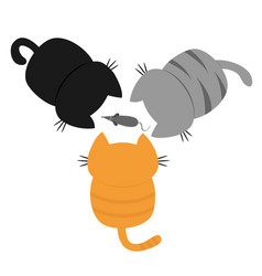 three kittens looking at mouse back and tail top vector image