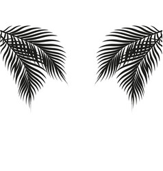 Tropical black and white palm leaves on both sides vector