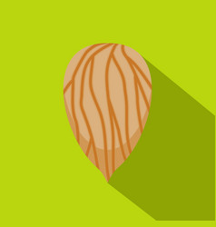 apricot seed icon flat style vector image