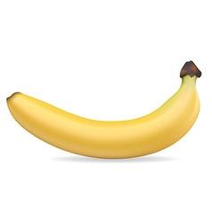 Banan 001 vector