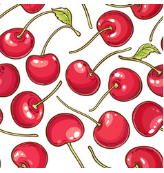 cherry berries pattern on white background vector image