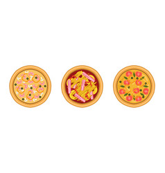 pizza as savory italian dish with round flattened vector image