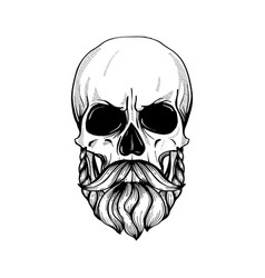 Skull with hairstyle vector