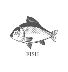 fish logo grey isolated black vector image