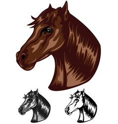 horse color vector image vector image