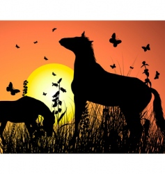 Horse on sunset background vector