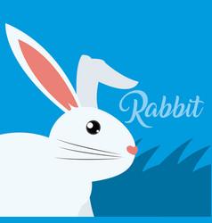 rabbit cute animal cartoon vector image